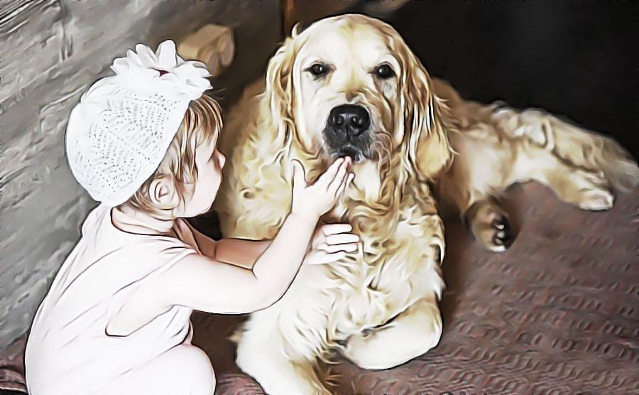 golden retriever met kinderen